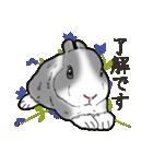 もふもふウサギ 2(個別スタンプ:7)