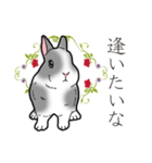 もふもふウサギ 2(個別スタンプ:10)