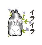 もふもふウサギ 2(個別スタンプ:11)
