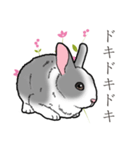 もふもふウサギ 2(個別スタンプ:13)