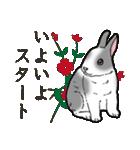 もふもふウサギ 2(個別スタンプ:14)