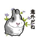 もふもふウサギ 2(個別スタンプ:15)