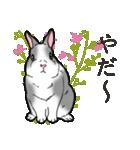 もふもふウサギ 2(個別スタンプ:16)