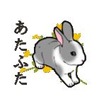 もふもふウサギ 2(個別スタンプ:19)