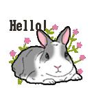 もふもふウサギ 2(個別スタンプ:20)