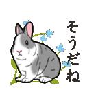 もふもふウサギ 2(個別スタンプ:23)