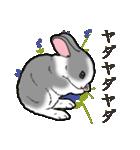 もふもふウサギ 2(個別スタンプ:25)