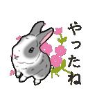 もふもふウサギ 2(個別スタンプ:27)