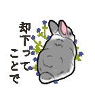 もふもふウサギ 2(個別スタンプ:29)
