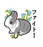 もふもふウサギ 2(個別スタンプ:32)