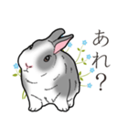もふもふウサギ 2(個別スタンプ:34)