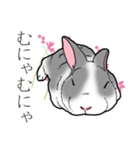 もふもふウサギ 2(個別スタンプ:39)