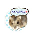 ハムスターのハム太 ☆Photo ver.2☆(個別スタンプ:15)