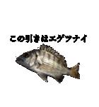 リアル釣りスタンプコレクション(個別スタンプ:5)