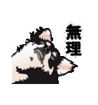 動く!黒チワワ(個別スタンプ:21)