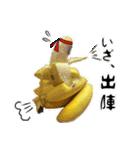 バナナのバナ平(実写)(個別スタンプ:04)