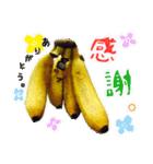 バナナのバナ平(実写)(個別スタンプ:07)