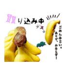バナナのバナ平(実写)(個別スタンプ:25)