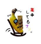 バナナのバナ平(実写)(個別スタンプ:37)