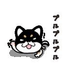 ブラックしば 2(個別スタンプ:01)