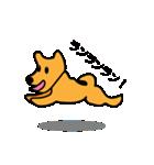 たっくんの犬 Choco(個別スタンプ:13)