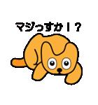 たっくんの犬 Choco(個別スタンプ:25)