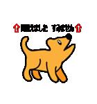たっくんの犬 Choco(個別スタンプ:30)