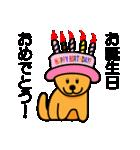 たっくんの犬 Choco(個別スタンプ:40)