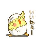 ぴよきち Ver.2(個別スタンプ:15)