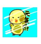 ひよこのきぃちゃん※ガラス越しバージョン(個別スタンプ:08)