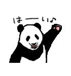 てきとーパンダ5(個別スタンプ:35)