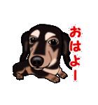 動く!ダックしゅⅢ(個別スタンプ:1)