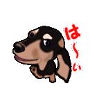 動く!ダックしゅⅢ(個別スタンプ:4)
