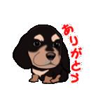 動く!ダックしゅⅢ(個別スタンプ:6)