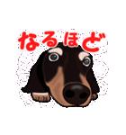 動く!ダックしゅⅢ(個別スタンプ:11)