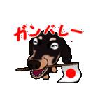動く!ダックしゅⅢ(個別スタンプ:12)