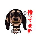 動く!ダックしゅⅢ(個別スタンプ:14)