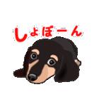 動く!ダックしゅⅢ(個別スタンプ:17)