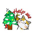 黒猫ハッピー&みーこ in Christmas(個別スタンプ:02)
