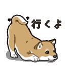 わんこ日和 柴犬のこども(個別スタンプ:01)