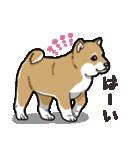 わんこ日和 柴犬のこども(個別スタンプ:07)