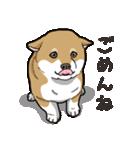 わんこ日和 柴犬のこども(個別スタンプ:15)