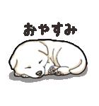 わんこ日和 柴犬のこども(個別スタンプ:30)