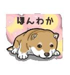 わんこ日和 柴犬のこども(個別スタンプ:31)