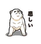 わんこ日和 柴犬のこども(個別スタンプ:39)