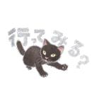 ゆめねこ5黒(個別スタンプ:15)