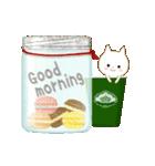 ☆白ねこブランのカジュアル日常セット☆(個別スタンプ:1)