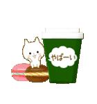 ☆白ねこブランのカジュアル日常セット☆(個別スタンプ:15)