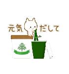 ☆白ねこブランのカジュアル日常セット☆