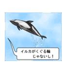 [丸型アイコン]〇〇ではないの?-2(個別スタンプ:09)